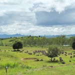 Plain of Jars Xieng Khoang